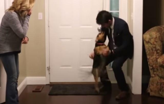 misionero_recibimiento_perro